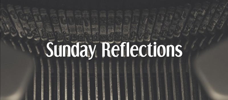 reflection-update